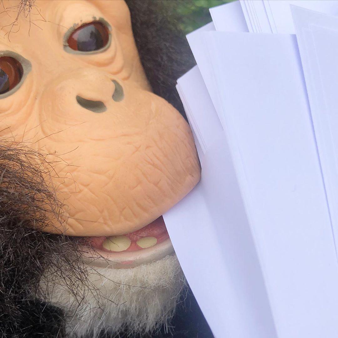 *Being into print*  #learningbydoing #hahamonkey